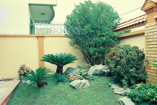 shop cây xanh trang trí đà nẵng