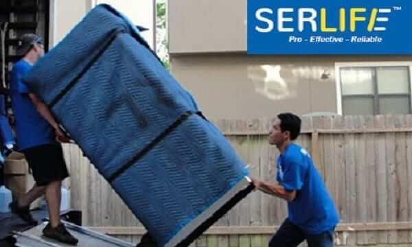 Serlife