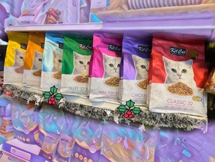 cửa hàng thú cưng Đà Nẵng